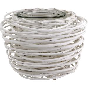 Photo DBO1500V : Willow and glass pot