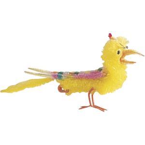 Photo DPQ1130 : Oiseau en plumes