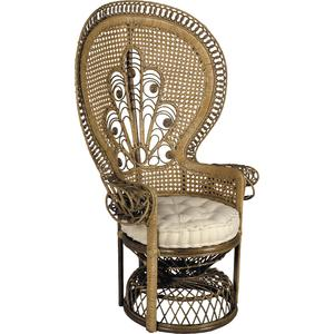 Photo MFA1400C : Rattan peacock chair