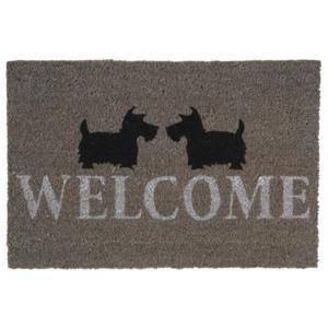 Photo NPA1880 : Paillasson Scottish Welcome