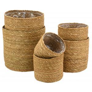 Photo JCP417SP : Cache-pots ronds en jonc naturel
