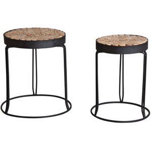 Photo NSE170S : Metal and wooden plant stands